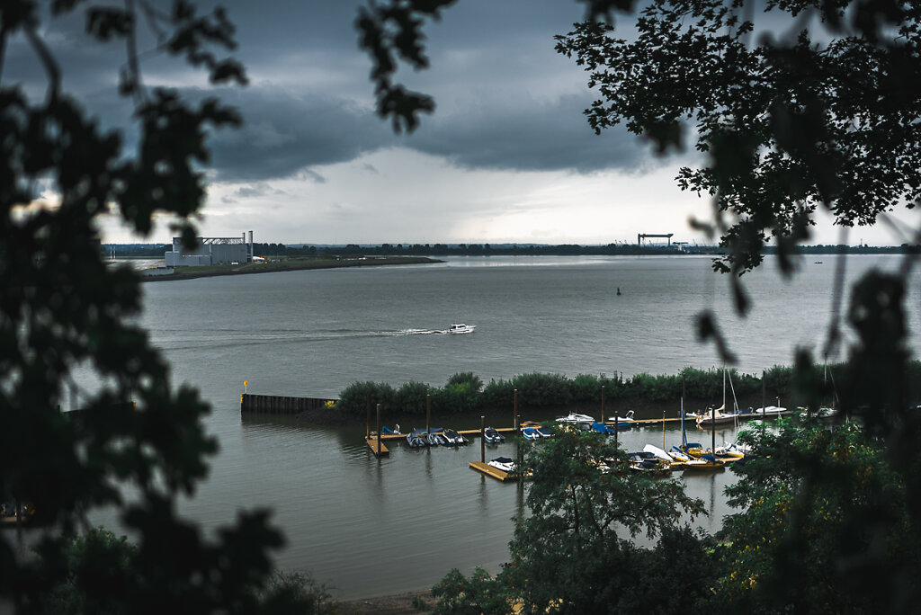 Elbe and Airbus from the Hirschpark